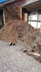 FREE WOOD CHIP Glenfield Campbelltown Area Preview