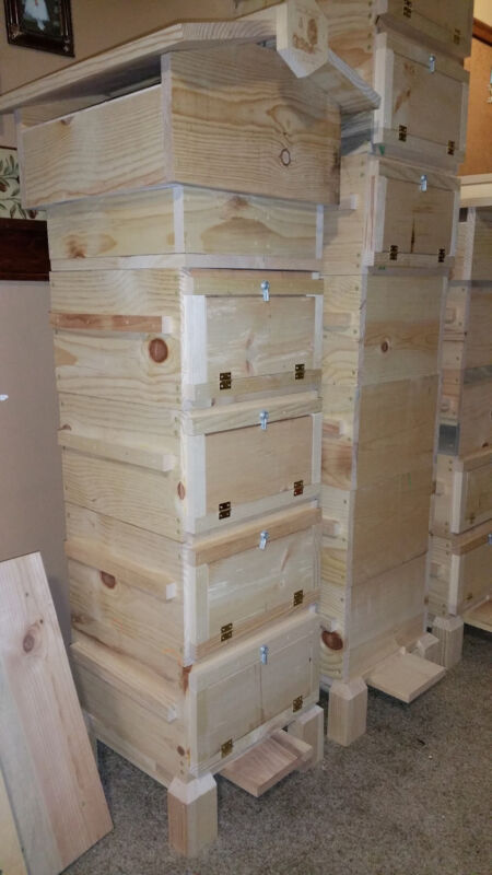 Warre Bee Hive with Observation Windows