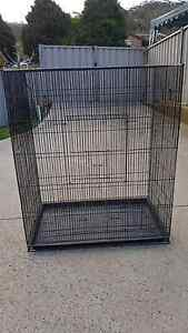 big bird cage for sale Springfield Gosford Area Preview