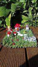 Wood-haven Fairy Garden Cooloongup Rockingham Area Preview