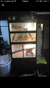 Custom Reptile cabinet 2 bay Birrong Bankstown Area Preview