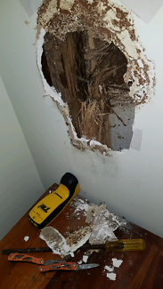Termite Inspection Services $198.00