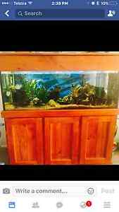 4ft fish tank including full set up Pakenham Cardinia Area Preview