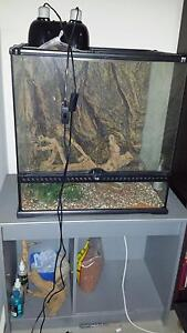 Bearded Dragon Vivarium, Lights Fixtures and Accessories Bedford Bayswater Area Preview