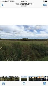 80 Acres - River Frontage with Spring Fed Pond