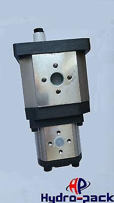 Hydraulische Doppelpumpe Tandempumpe 30C42X198H/C22X201 42+22 ccm rechtsdrehend