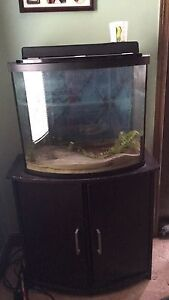 30 gal fish tank and stand