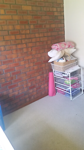 Room for rent in Ascot Park Park Holme Marion Area Preview