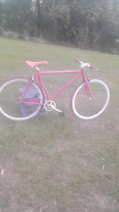 Hot pink fixie bike with reversible back wheel