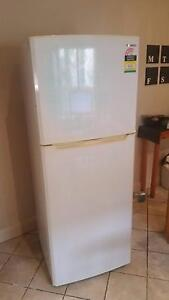 Samsung 394ltr Fridge/Freezer Newcastle Newcastle Area Preview