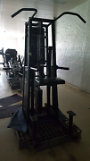 Stairmaster Gravitron 2000 Assisted chin/dips Cohuna Gannawarra Area Preview