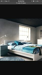 Queen Malm White bed only( no matress)