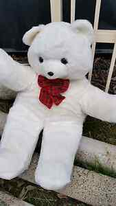 Big Teddy white soft toy Sorell Sorell Area Preview