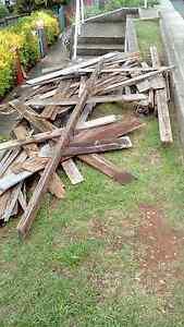 Free firewood Montello Burnie Area Preview