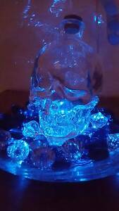 Stunning skull feature lights Bentley Canning Area Preview