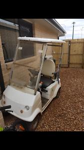 1 seater golf cart Redbank Plains Ipswich City Preview