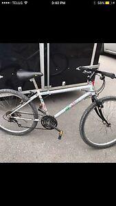 Terrific Mountain Bike