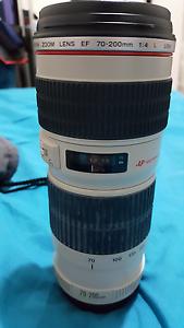 Canon 70-200mm 1:4 L USM lens Quakers Hill Blacktown Area Preview
