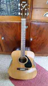 Yamaha acoustic guitar F310P in soft carry case Stafford Heights Brisbane North West Preview