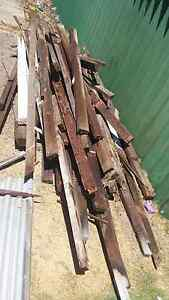 Free firewood Eden Hill Bassendean Area Preview