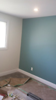 Professional Accent wall
