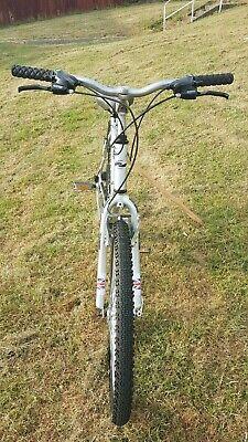 Dawes bike, large.