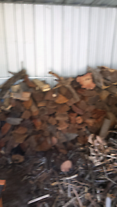 Firewood  chopped Greenbank Logan Area Preview