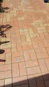Pavers. Clay. Red blend Surrey Hills Boroondara Area Preview