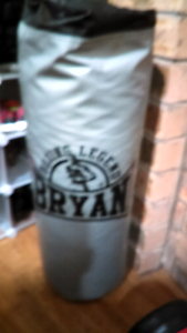 Punch bag bryan Frenchs Forest Warringah Area Preview