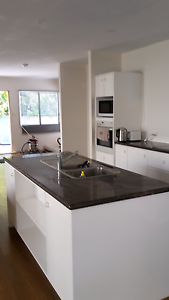Buderim for rent on Pittards  3 bed 2 bath  new open plan living Maroochydore Maroochydore Area Preview