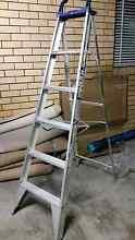 Baileys 6 step ladder Clayfield Brisbane North East Preview