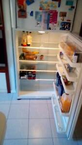 Fridge fisher and paykel