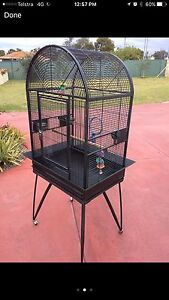 WANTED to Buy - Bird Cage with skirt Kelmscott Armadale Area Preview