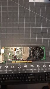 Low Profile 1GB PCI Video Card