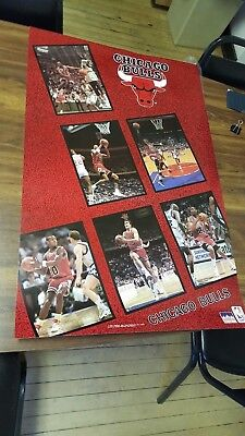 - Chicago Bulls Team Poster 1991