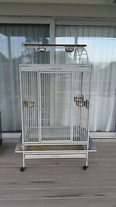 Bird cage Scamander Break ODay Area Preview