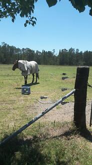 horse agistment and  1 bedroom granny flat