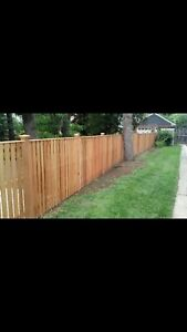 Landscaping and Fences