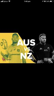 Bledisloe cup Wallabies vs All Blacks