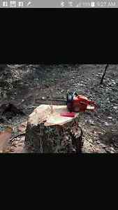 Tree cutting and stump grinding Bankstown Bankstown Area Preview