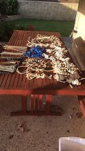 Tent Ropes & Pegs Muswellbrook Muswellbrook Area Preview