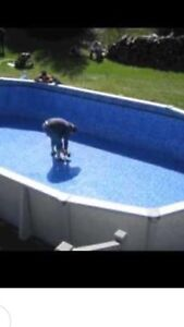 Expert in Pool Liner Replacement/ Expert en Rempl de Toile