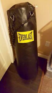 Everlast 70lb Heavy bag/Punching bag