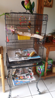Bird cage for  sale or swapp