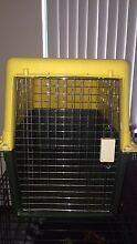Dog Crate Bunbury Bunbury Area Preview