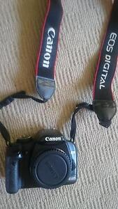 canon 450D with standard lenses X2 Greenwich Lane Cove Area Preview