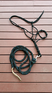 Rope halter and lead rope Heatherton Kingston Area Preview