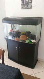 fish tank and stand The Narrows Darwin City Preview