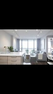 Modern  furnished 1bdr condo downtown Hamilton.  May 1