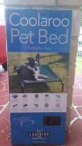 Dog bed: Medium Nundah Brisbane North East Preview